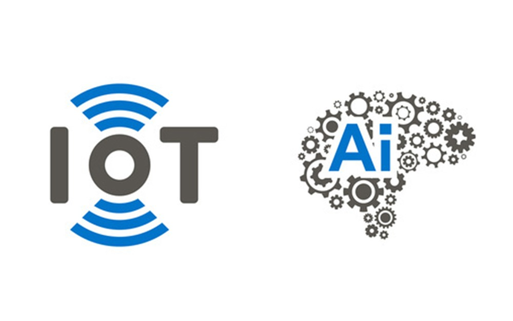Whizit IoT and AI Expert