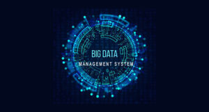 Big Data Management System